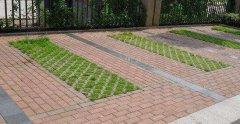 植草混凝土路面砖的应用