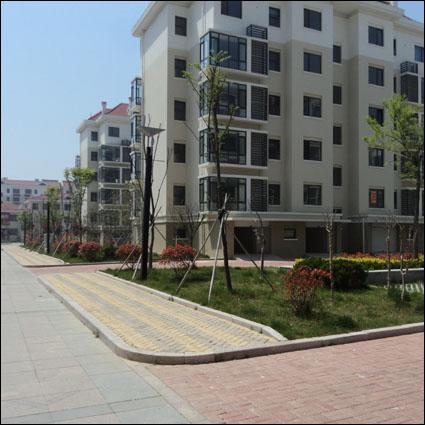 荷兰砖为城市建设发展提供方便
