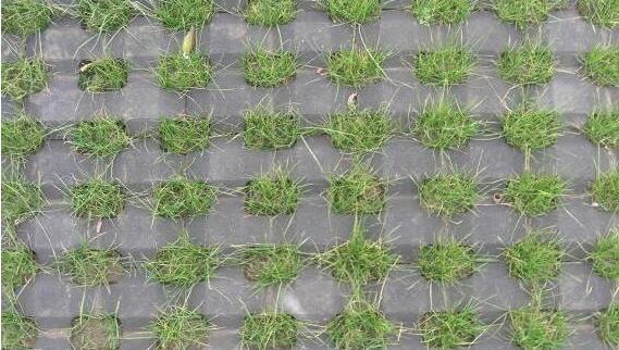 草坪砖技术介绍