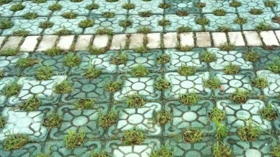 对草坪砖的简单了解